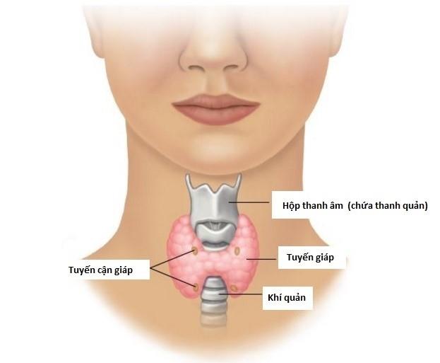 Điều trị phẫu thuật ung thư tuyến giáp biệt hóa tốt